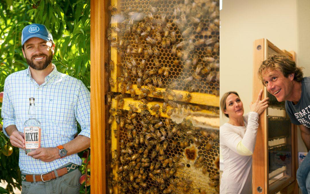 NOLADrinks Show – Honeybee Conservation – Jul20Ep1