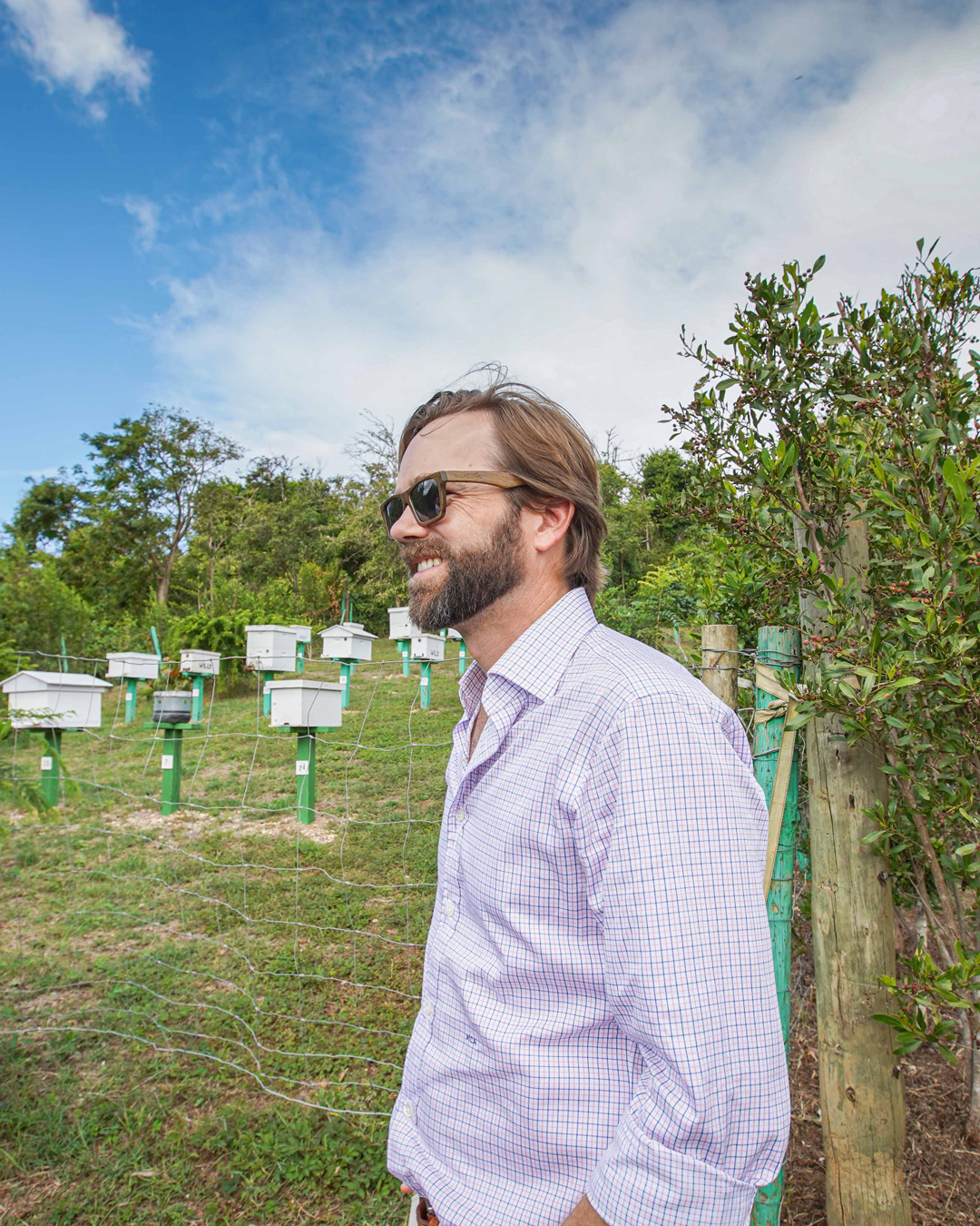 NOLADrinks Show – Honeybee Conservation – Jul20Ep1 – Matti Anttila of Dixie Southern Vodka at the honeybee conservation project in Puerto Rico.