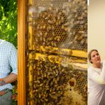 NOLADrinks Show – Honeybee Conservation – Jul20Ep1 – Matti Anttila of Dixie Southern Vodka and Ted Dennard of The Savannah Bee Co.